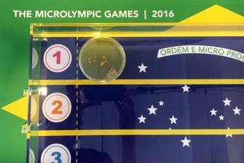 http://www.joostmollen.com/files/gimgs/th-28_microlympic-games-2016-640.jpg